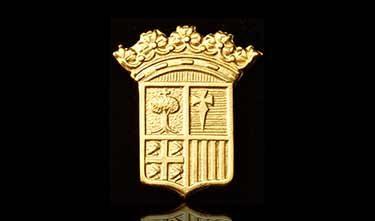 Pin Escudo de Aragón